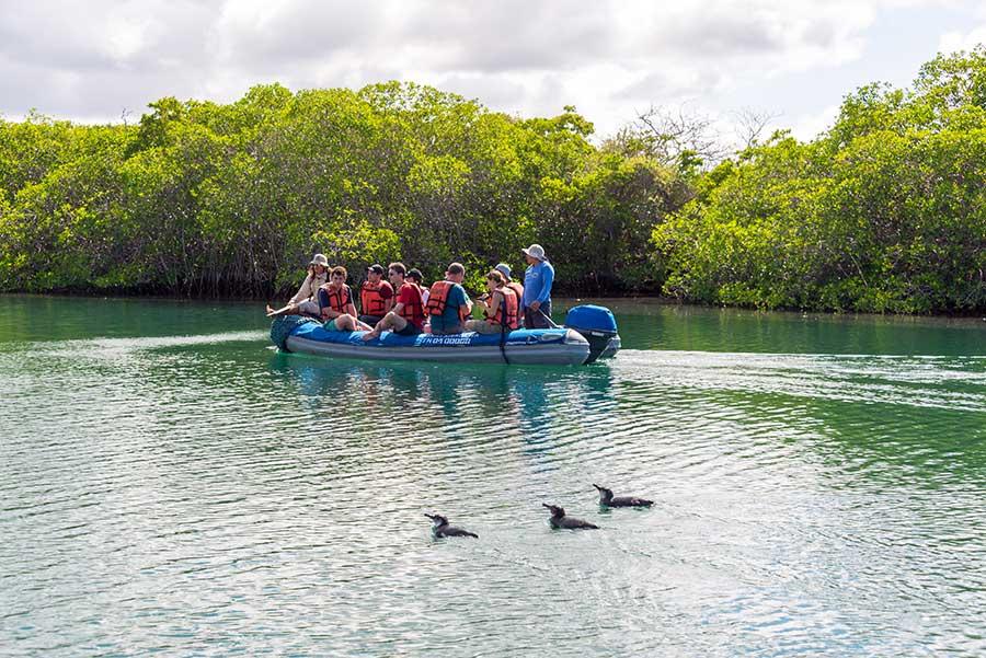 Galapagos Sea Excursions