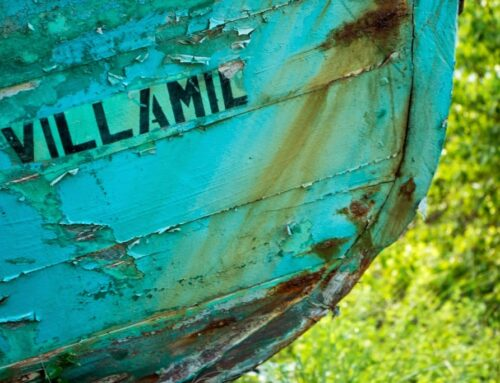 Puerto Villamil: Helpful Information And Things To Do